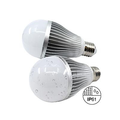 Dual AC/DC LED Lamp